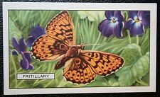 Pearl-bordered Fritillary      Vintage Butterfly Card  # VGC