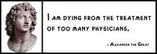 Wall Quote - Alexander the Great - I am dying from the treatment of too many phy