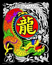 Chinese Dragon - Large 16x20 Inch Fuzzy Velvet Coloring Poster