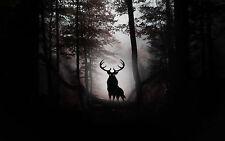 Enmarcado impresión-El Mal Stag en un horror gótico Bosque Oscuro (foto Cartel Madera)