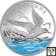 2017Arctic Tern-Glistening North'with Glitter Prf $20 .9999 Silver 1oz(18003) NT