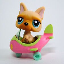 Littlest Pet Shop # 1847 FRENCH BULLDOG & Pilot Airplane Pets on the Go
