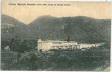 CARTOLINA d'Epoca - VARESE : Colonia Agricola Dandolo 1916