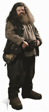 Hagrid Harry Potter Hogwarts Fun Cardboard Cutout Stand Up Great for parties