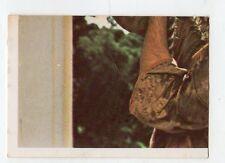 figurina - SANDOKAN ALLA RISCOSSA BOY 1976 - numero 222