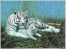 Beautiful Matted White Tiger & Cub Foil Art Print~Affordable Art~8x10 Animal