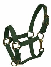 PREMIUM TRIPLE PLY NYLON DELUXE PONY SIZE OR FOAL HORSE HALTER HUNTER GREEN