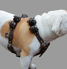 "10 Lbs Real Leather Weighted Pulling Dog Harness Exercise Training 35""-44"" Chest"