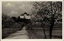 Chlumec nad Cidlinou chlumetz S/W ak 1937 Zámek camino al castillo próspero árboles