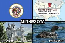 SOUVENIR FRIDGE MAGNET of THE STATE OF MINNESOTA USA