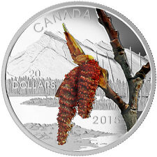 2015 $20 FINE SILVER COIN FORESTS OF CANADA: BOREAL BALSAM POPLAR