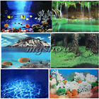 Double Sided Aquarium Vivarium Landscape Background Backdrop Fish Tank Poster