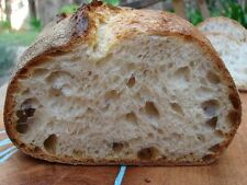 Lovely Organic Rye Fresh Yeast Sourdough 80g Zakwas Free 1st class Postage
