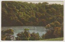 Devon postcard - Sharpham Woods, River Dart