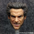 Custom made Hot 1/6 scale Head Sculpt Angry Wolverine Hugh Jackman X-Men Toys#US
