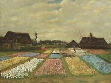 VINCENT VAN GOGH DUTCH FLOWER BEDS HOLLAND OLD ART PAINTING POSTER BB6478A