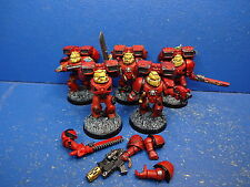 5 Mann Sturmtrupp der Blood Angels GUT BEMALT 4