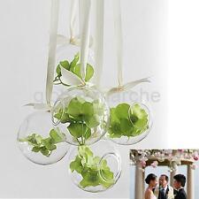 Vase à Suspendre en Verre Transparent Boule pour Plantes Fleurs Décoration
