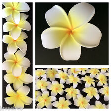 Hawaiian Plumeria Foam Flower Hair Clip White Yellow