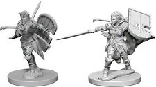 HUMAN FEMALE PALADIN - DUNGEONS & DRAGONS PATHFINDER PRIMED UNPAINTED 25MM MINIS