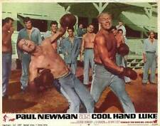 COOL HAND LUKE Movie POSTER 11x14 Paul Newman George Kennedy J.D. Cannon