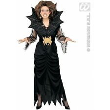 XXL Ladies Womens Spider Lady Costume Outfit for Halloween Witch Fancy Dress