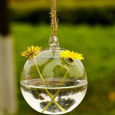 Hot Clear Glass Round with 2 Holes Flower Plant Stand Hanging Vase Office Decor