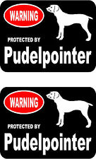 2 protected by Pudelpointer dog car bumper home window vinyl decals stickers