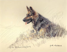 GERMAN SHEPHERD DOG GSD ALSATIAN ART LIMITED EDITION PRINT