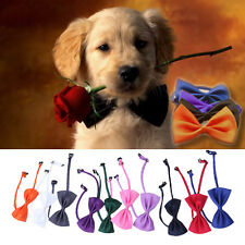 10pcs Cute Lovely Bow Tie For  Dog Puppy Cat Pet Toy  Necktie Collar Clothes NEW