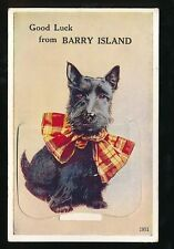 Wales Glamorgan Glam BARRY ISLAND Good Luck Dog Pocket Novelty c1950s PPC