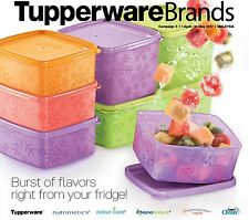 New Tupperware snowflake square round fridge container set (9) + free 2 midgets