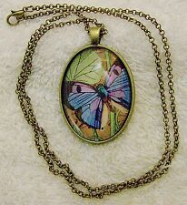 NEW NECKLACE BRASS TONE FRAME BUTTERFLY COLORS ARTISTIC INSECT GARDEN FLOWE JN1