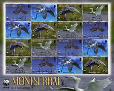 Montserrat 2010 MNH Reddish Egret WWF 16v Sheetlet Birds