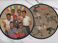 """MADNESS - HOUSE OF FUN - 7"""" PIC DISC + PRESS SHEET - SUGGS TWO 2 TONE SKA"""