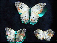 Printed, Die Cut Paper Butterflies Sonoran Blue Design