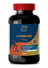 Improve Recovery - L-ARGININE 500mg - Post Workout 1B