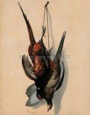 ANTIQUE 8X10 DEAD HANGING GAME PHOTO STILL LIFE REPRINT ROOSTER AND HEN PHEASANT