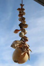 Real Seashell Hanging Mobile - 30 shells / 29 in. - Huge Shell Variety  **SALE**