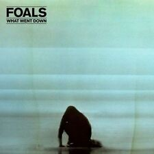 What Went Down - Foals - CD New Sealed
