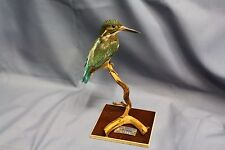 Taxidermy-hunting-chasse-präparat- Common Kingfisher with permit