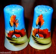 Made In Japan Autumn Scene Salt & Pepper Shakers~VGC~Fast Free Shipping!