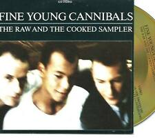 FINE YOUNG CANNIBALS The Raw And The Cooked Sampler 4 TRACK PR CD with interview