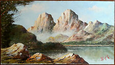 Antico Quadro Dipinto Pittura Olio Original Antique Oil Painting Vintage