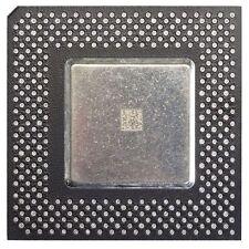 Intel Celeron SL36C 366MHz 128KB 66MHz FSB Socket 370 CPU FV524RX36 PROCESSORE