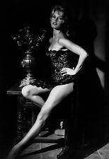 Brigitte Bardot 13x19  Classic Hollywood Photo.13 x 19 B&W Picture #4