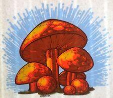 Vintage 1974 Original RoAcH Psychedelic Mushrooms Iron On Transfer Shrooms RARE!