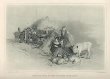 ANTIQUE FARM DONKEY COLT SHEPHERDESS DISTAFF GOAT KID CALF SCOTLAND ART PRINT