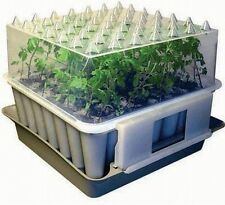 Compact plug plant trainer propagator potting tray Pack of 2