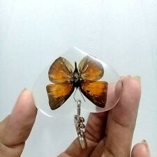 Real Heart Butterfly Keyring Accessories In Pendant Resin Insect Moth Key Chain